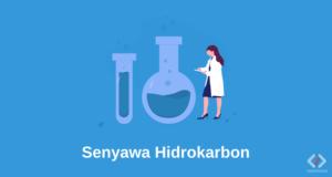 Laporan Praktikum Kimia Organik 1 Senyawa Hidrokarbon